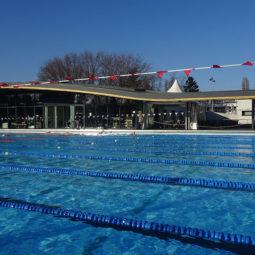 piscine-mon.jpg
