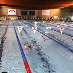 equi-piscine-illberg-mulhouse.jpg